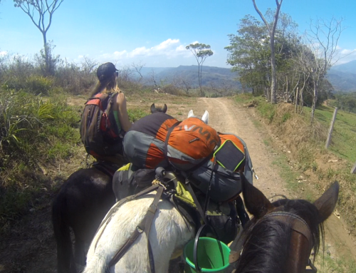 Cielo y Tierra : 1000km by horse and paraglider through Colombia